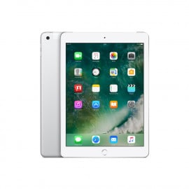 ipad2017_32gb_silver_lte_1