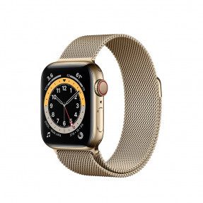 Apple Watch S6 40 mm Gold Stainless Steel Case with Milanese Loop Gold