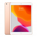 ipad-10-2-gold-128gb-wifi-2019